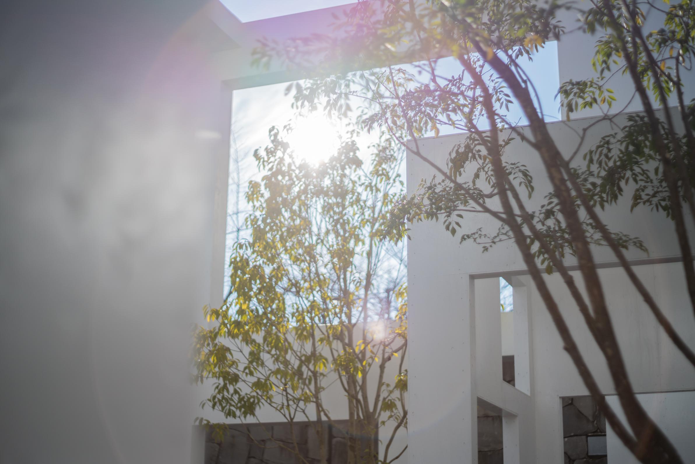 2020.01.19 東京国立近代美術館 窓展-19.jpg