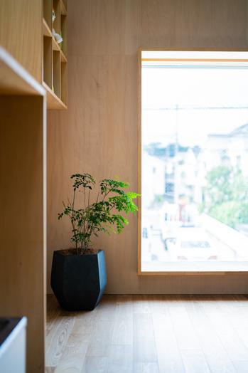 2019.08.03 レイモンド下高井戸保育園完成写真-0077.jpg